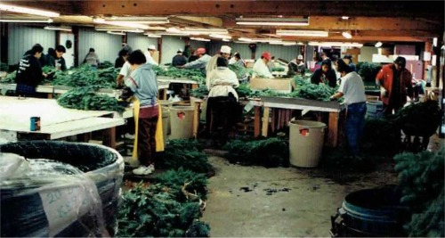 Our Wreath Making Factory
